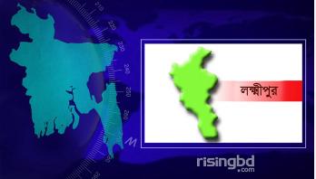 Lakshmipur road crash leaves two dead