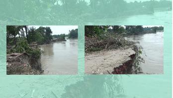 মানিকগঞ্জে নদী ভাঙনে কয়েকশ' স্থাপনা বিলীন