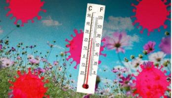 Sunlight kills coronavirus in 34 minutes, research claims