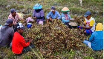 করোনায় প্রায় ৫০ কোটি মানুষ দারিদ্রতার শঙ্কায়