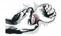 টঙ্গীতে চাকরির প্রলোভনে তরুণীকে দলবদ্ধ ধর্ষণ