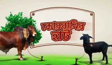 কোরবানির গরু মিলবে প্রিয়শপে