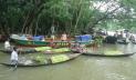 পেয়ারা বাগানে করোনার থাবা