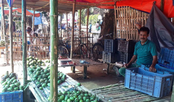 অনলাইনেও ক্রেতা কম, আম নিয়ে বিপাকে ব্যবসায়ীরা