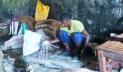 চামড়া পাচার রোধে সীমান্তজুড়ে নিরাপত্তা জোরদার