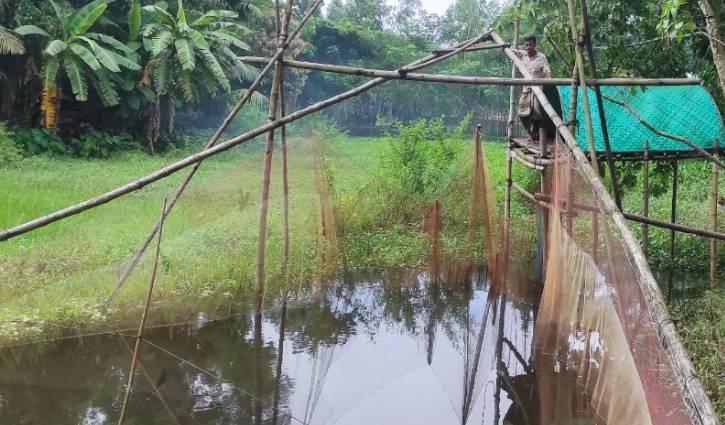 কুমিল্লার নদী-খালে দেশি মাছের আকাল