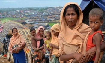 WB proposes to keep Rohingyas in Bangladesh, Dhaka says 'no'