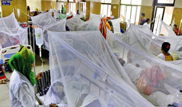 194 new dengue patients hospitalised in 24hrs