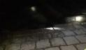 চাঁদপুরের পুরান বাজারে হঠাৎ ভাঙছে নদী, আতঙ্কিত মানুষের ছোটাছুটি