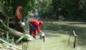 বরগুনার ৭১ ভাগ মানুষের রান্না-গৃহস্থলীতে খালের পানি ব্যবহার