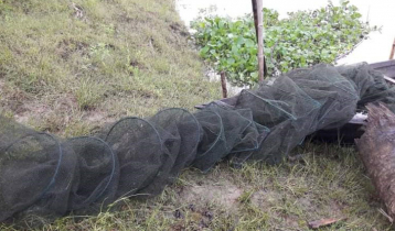 হালতিবিলে 'চায়না জালে' নিধন হচ্ছে পোনা মাছ