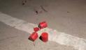 ওবায়দুল কাদেরের বাড়ির ফটকে ককটেল নিক্ষেপ, গ্রেপ্তার ১
