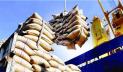 আমদানি করা হচ্ছে ৫০ হাজার মেট্রিক টন চাল