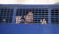সাংবাদিক রোজিনা ইসলামকে গ্রেপ্তারেরঘটনায় টিএমজিবি'র নিন্দা