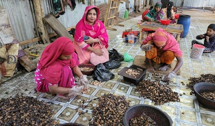 পুষ্টিগুণে ভরপুর পাহাড়ি কাজুবাদাম
