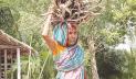 সংকটে জীবন-জীবিকা, বিকল্পের সন্ধানে মুণ্ডারা
