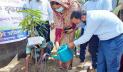 শায়েস্তাগঞ্জে বিভিন্ন শিক্ষা প্রতিষ্ঠানে বৃক্ষরোপণ