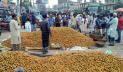 লক্ষ্মীপুরে সুপারিতে ৬০০ কোটি টাকা আয়ের সম্ভাবনা