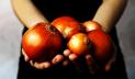 যুক্তরাষ্ট্রে ৩৭টি অঙ্গরাজ্যে পেঁয়াজ ফেলে দেওয়ার নির্দেশ