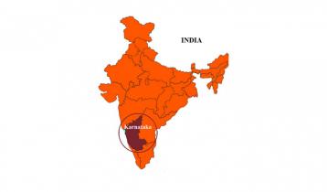 ভারতে ১০০ কুকুর মেরে ফেলার অভিযোগ