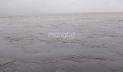 তিস্তার পানি বিপৎসীমার ৬৫ সেন্টিমিটার ওপরে, নিম্নাঞ্চল প্লাবিত