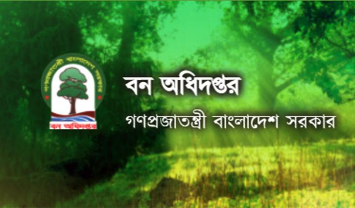 এসএসসি ও এইচএসসি পাসে চাকরি দিচ্ছে বন অধিদপ্তর