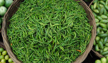Price of green chilli shoots up to Tk 100 per kg