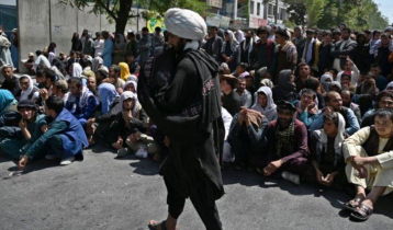 Afghanistan`s banking sector near to collapse