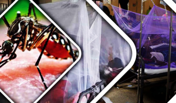 190 more hospitalised with dengue