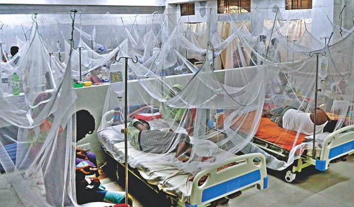 275 more dengue patients hospitalised in 24hrs